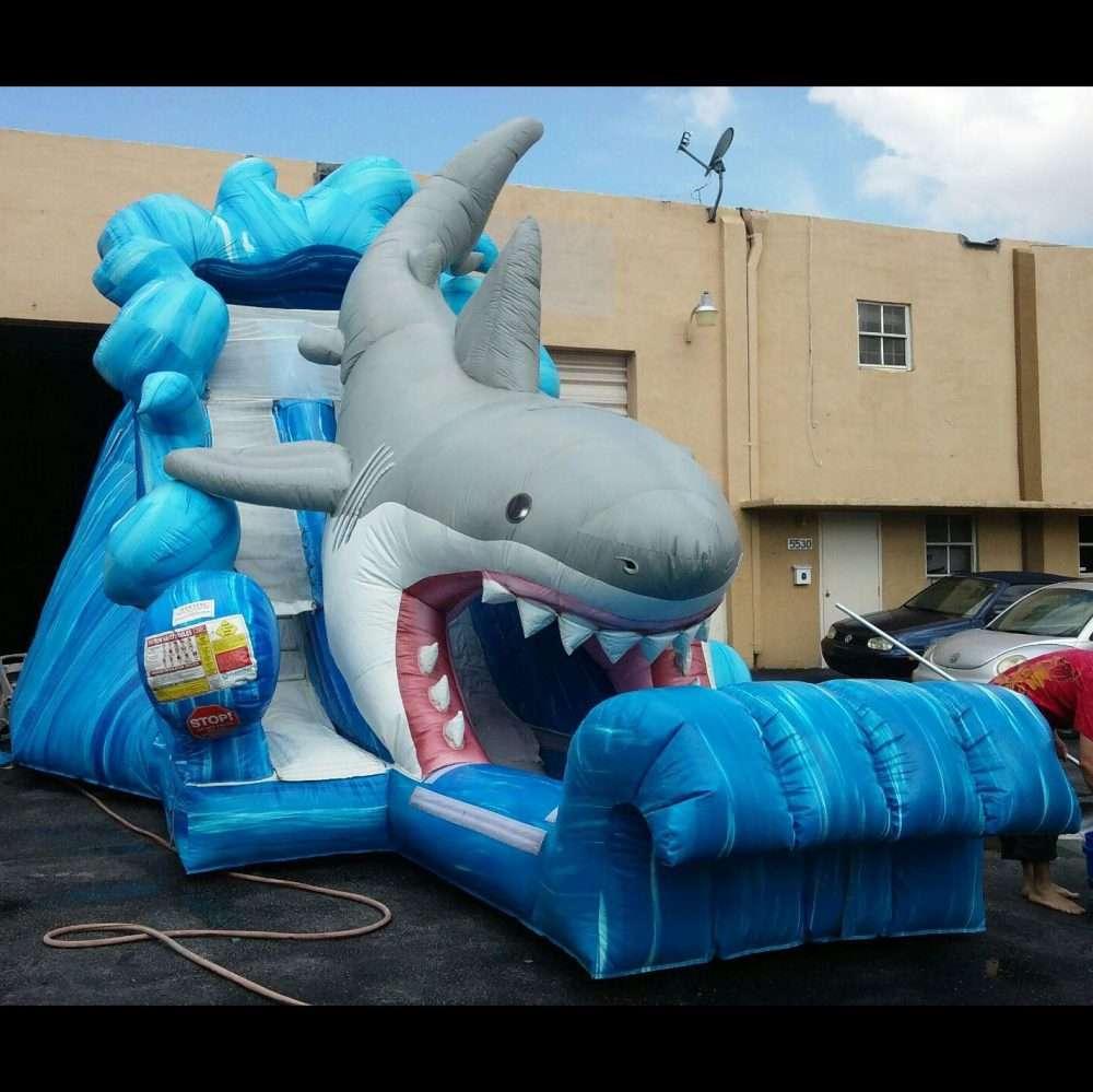 large shark inflatable water slide rental