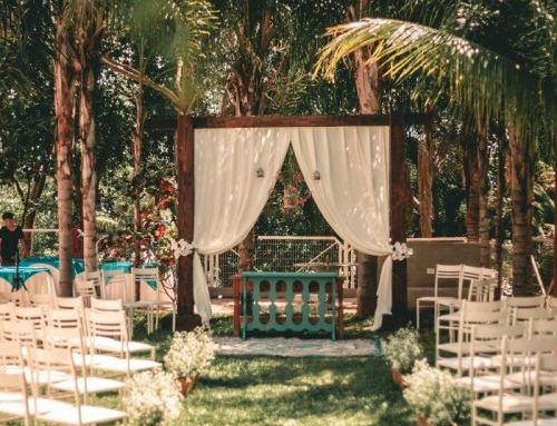 Top Types of Wedding Chair Rentals